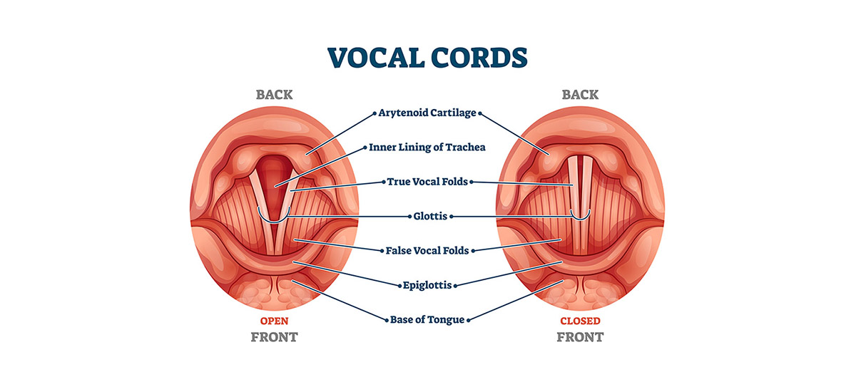 vocal cord stripping